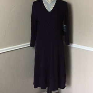 Cable-knit Bodice Fit Flare Scoop Long Sleeve NWT
